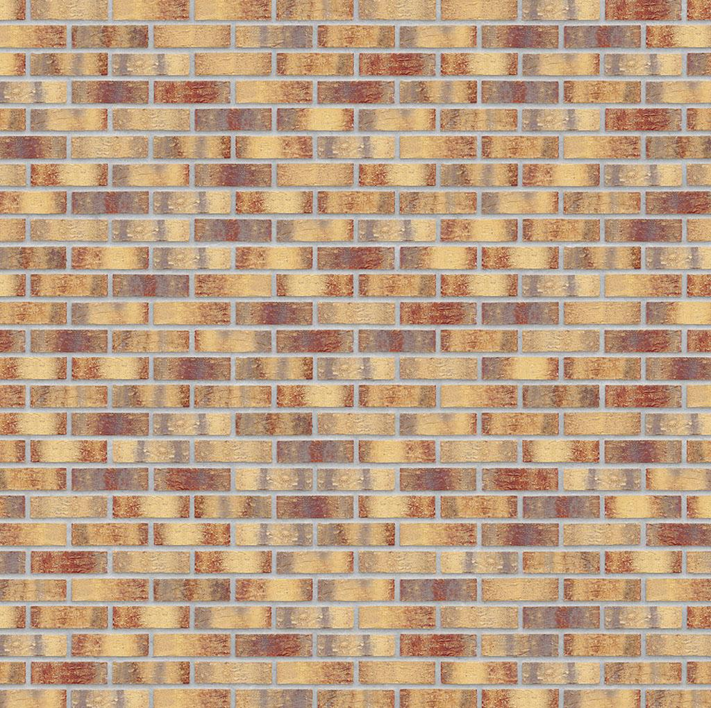 KLAY_Tiles_Facades - KLAY-Brickslips-_0002_KBS-KOC-1069-Golden-Treasure