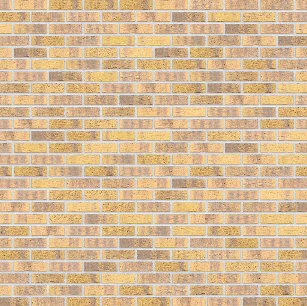 KLAY_Tiles_Facades - KLAY-Brickslips-_0003_KBS-KOC-1068-Midas-Touch
