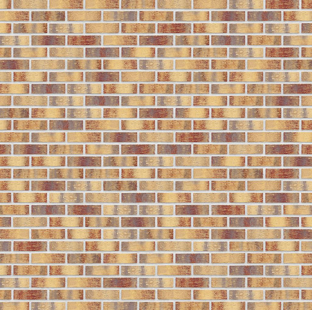 KLAY_Tiles_Facades - KLAY-Brickslips-_0003_KBS-KOC-1069-Golden-Treasure