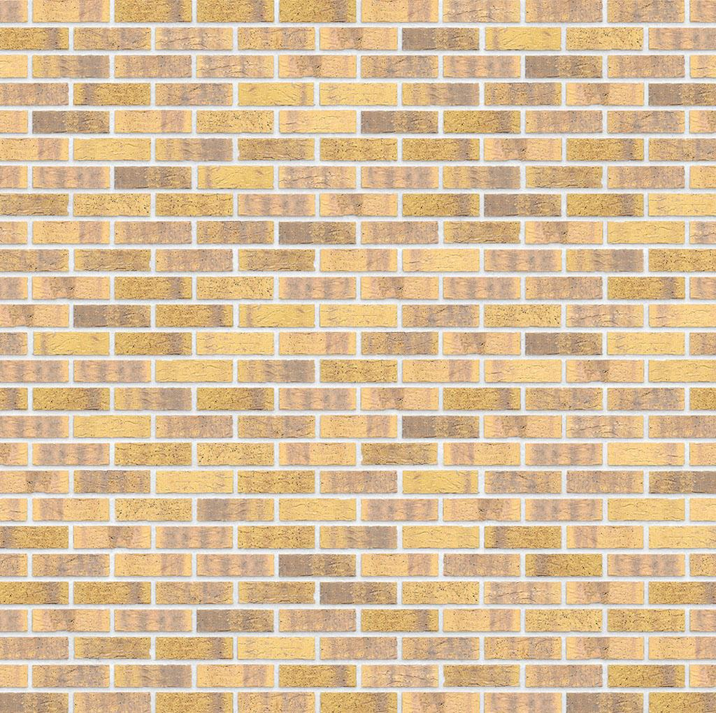 KLAY_Tiles_Facades - KLAY-Brickslips-_0004_KBS-KOC-1068-Midas-Touch