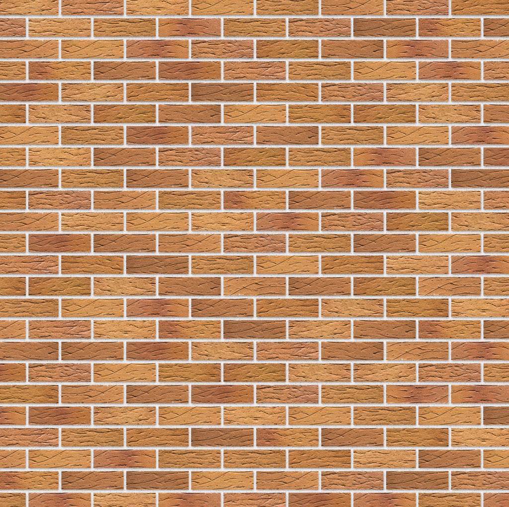 KLAY Tiles Facades - KLAY-Brickslips-KBS-SKP_0006s_0001_2024-Honey-Clay