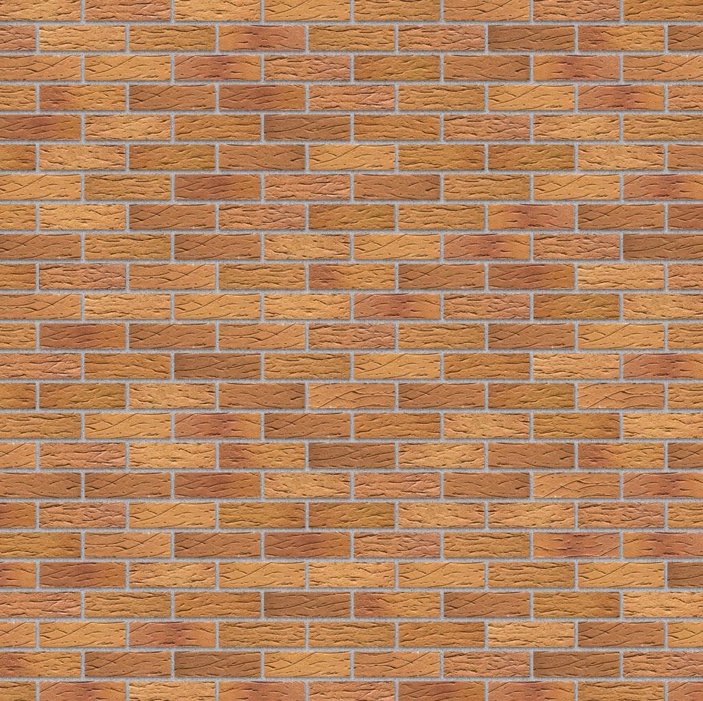 KLAY Tiles Facades - KLAY-Brickslips-KBS-SKP_0006s_0003_2024-Honey-Clay